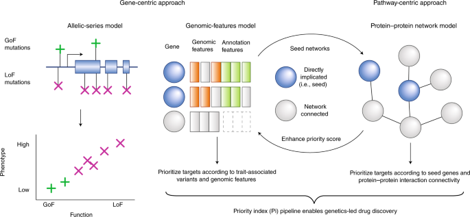 Priority index for human genetics and drug discovery