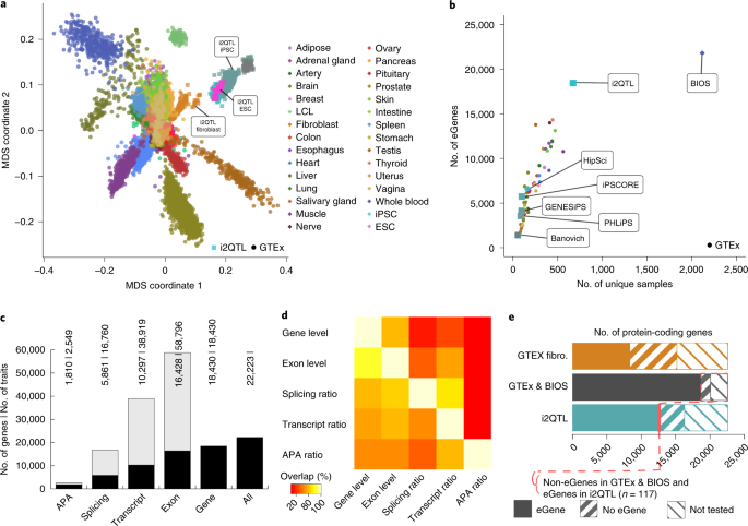 Identification of rare and common regulatory variants in pluripotent cells using population-scale transcriptomics