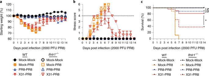 Interferon-λ modulates dendritic cells to facilitate T cell