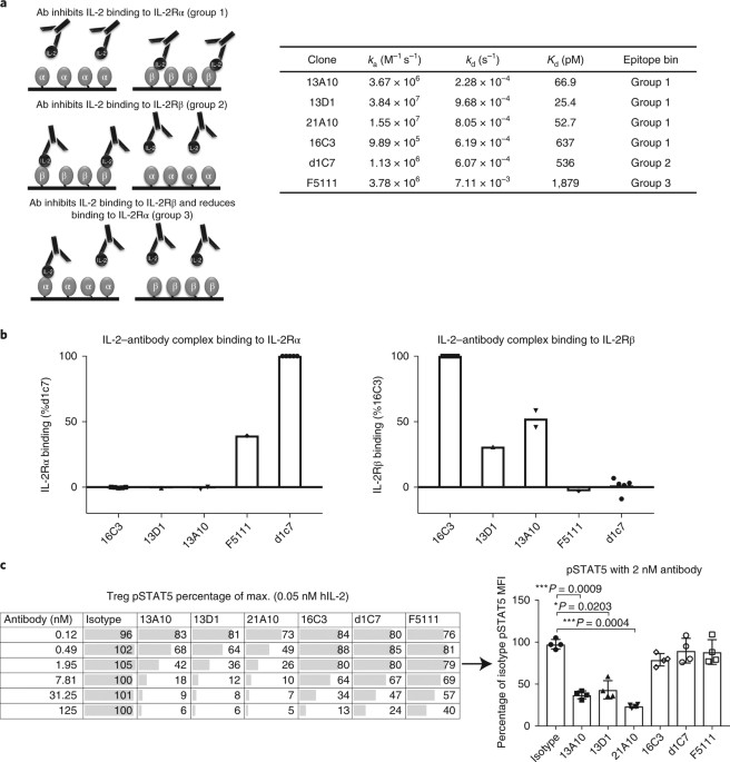A Human Anti Il 2 Antibody That Potentiates Regulatory T Cells By A
