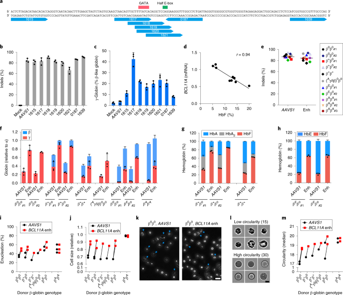 Highly efficient therapeutic gene editing of human hematopoietic stem cells