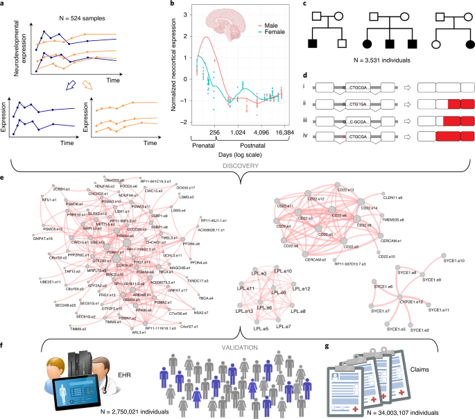 A multidimensional precision medicine approach identifies an autism subtype characterized by dyslipidemia