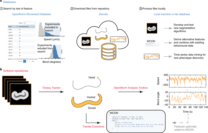An open-source platform for analyzing and sharing worm