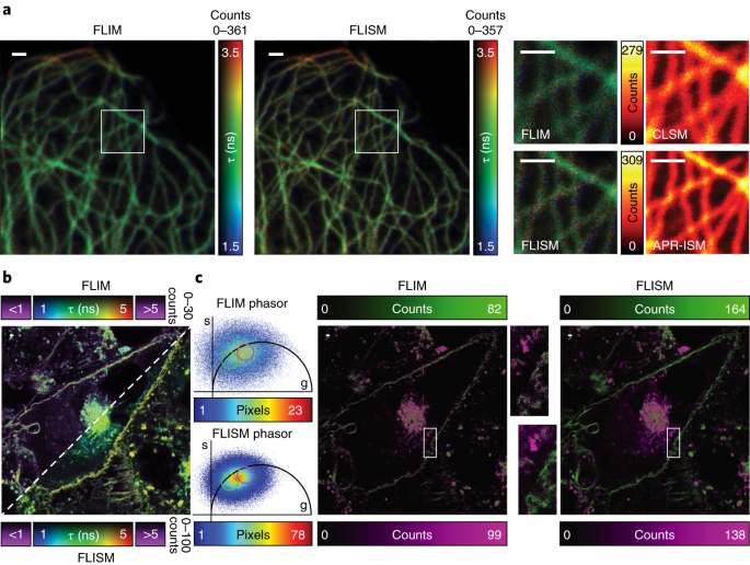 A robust and versatile platform for image scanning microscopy