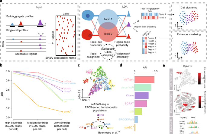 cisTopic: cis-regulatory topic modeling on single-cell ATAC-seq data