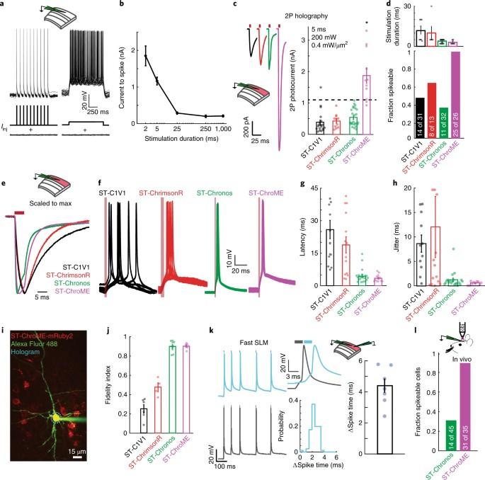 Precise multimodal optical control of neural ensemble activity ...