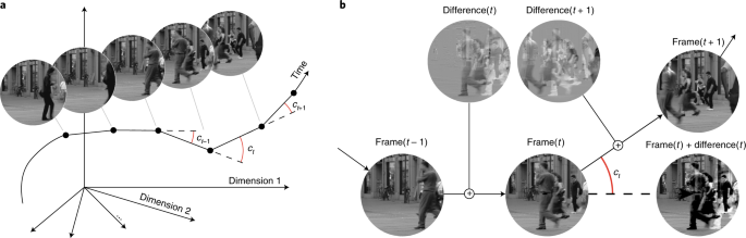 Perceptual straightening of natural videos   Nature Neuroscience