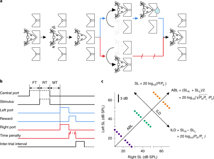 The mechanistic foundation of Weber's law | Nature Neuroscience