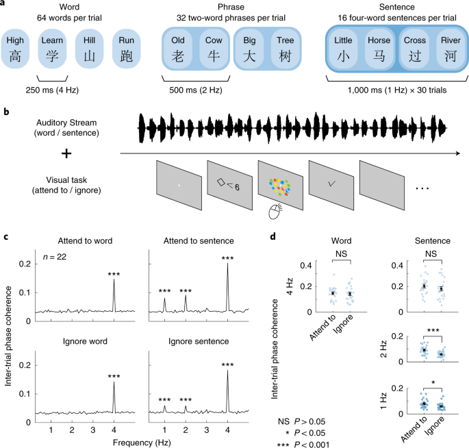 Assessing the depth of language processing in patients with disorders of consciousness