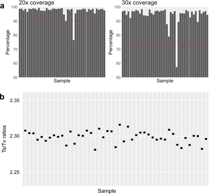 Reference exome data for a Northern Brazilian population