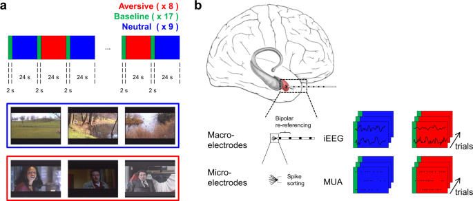 Dataset of spiking and LFP activity invasively recorded in the human amygdala during aversive dynamic stimuli