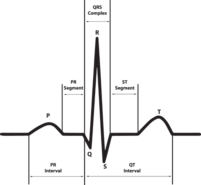 A 12-lead electrocardiogram database for arrhythmia research covering more than 10,000 patients