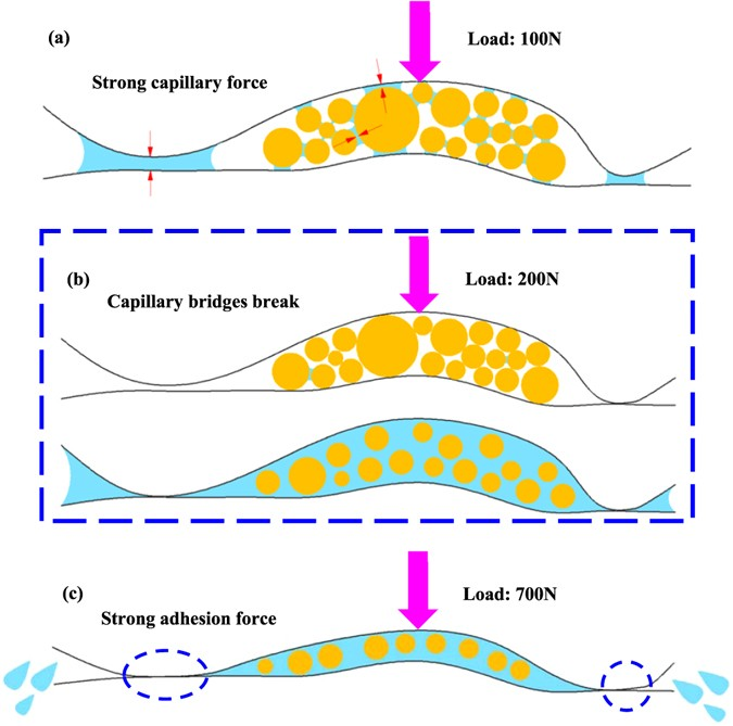 Unexpected Friction Behaviours Due To Capillary And Adhesion Effects