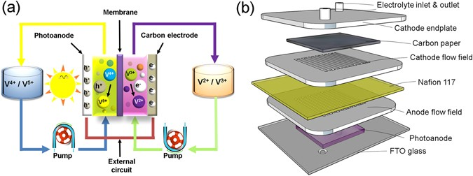 An All Vanadium Continuous Flow Photoelectrochemical Cell