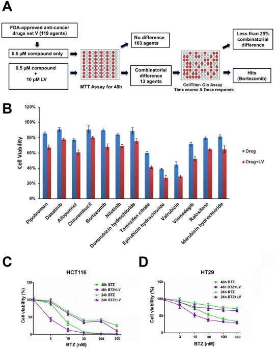Leucovorin Enhances The Anti Cancer Effect Of Bortezomib In Colorectal Cancer Cells Scientific Reports