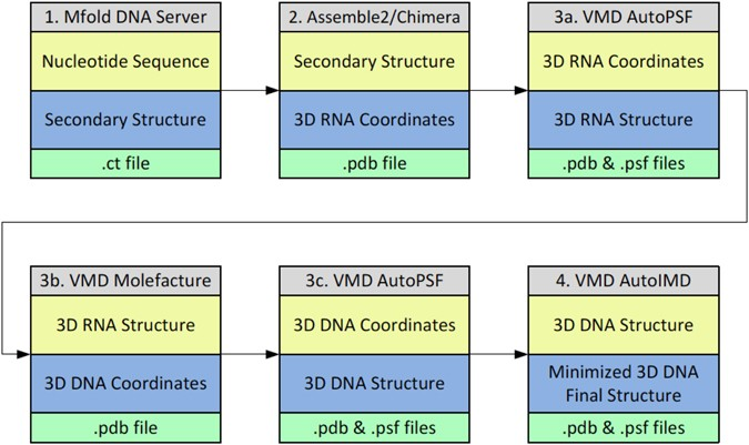 Workflow Used To Construct The SsDNA 3D Structures From Sequence Approach Consists Of Four Main Steps Involving Building Secondary