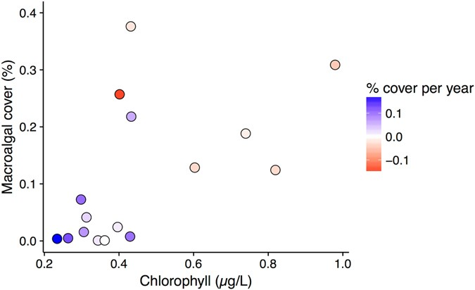 Change in Cliona orientalis cover was highest at locations with low  chlorophyll concentration and low macroalgal cover. Points represent  average macroalgal ... 8a3756c9cb2a2