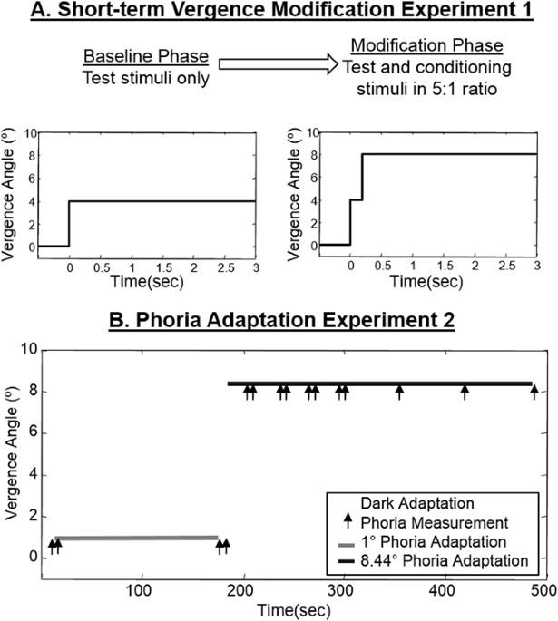 Adaptation to Progressive Additive Lenses: Potential Factors
