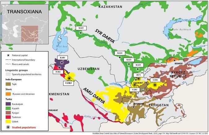 Ethnical Asia.