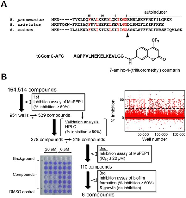 High-throughput Screening of Small Molecule Inhibitors of