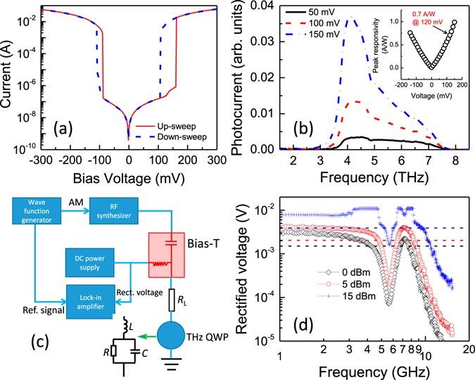 Quantum Error Correction with Biased Noise  CaltechTHESIS