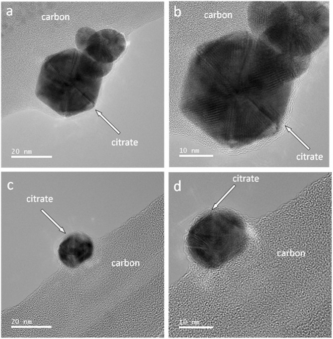 Surface interactions between gold nanoparticles and biochar phase contrast tem images of individual nau particles supported on a carbon lacey grid images were obtained from two different regions of tem grid a and fandeluxe Image collections