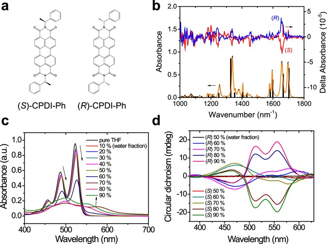 Morphogenesis and optoelectronic properties of supramolecular a molecular structures of s cpdi ph and r cpdi ph b experiment and calculation results of ir and vcd spectra of cpdi ph solid lines show ccuart Images