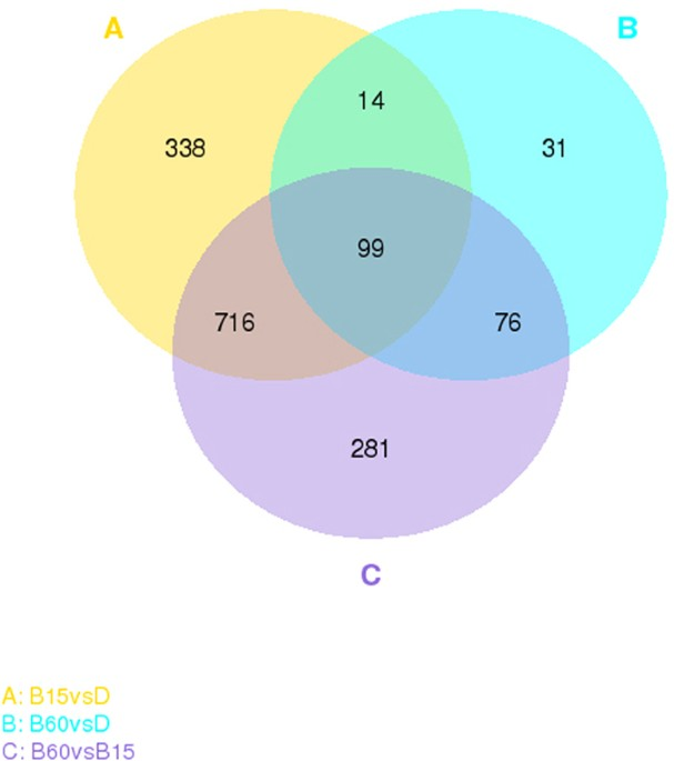 The molecular mechanisms of monascus purpureus m9 responses to venn diagram of sequence samples of m purpureus m9 the diagram displays the number of unique and shared differentially expressed genes degs in the three ccuart Gallery