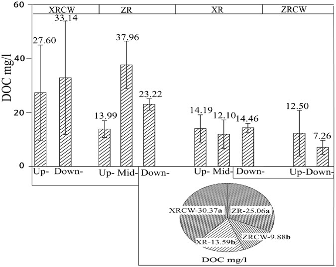 Factors Affecting Distribution Patterns Of Organic Carbon In