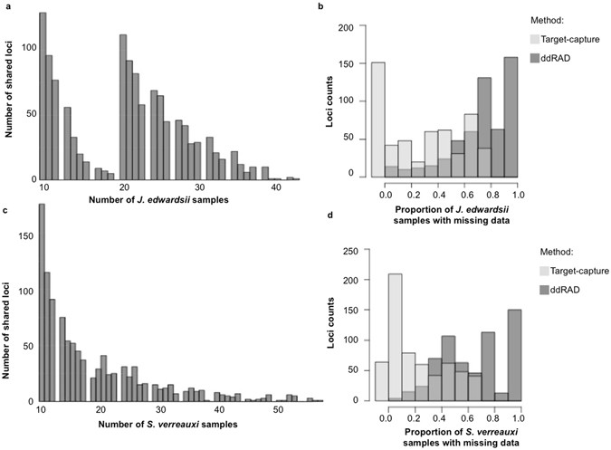 Efficiency of ddRAD target enriched sequencing across spiny