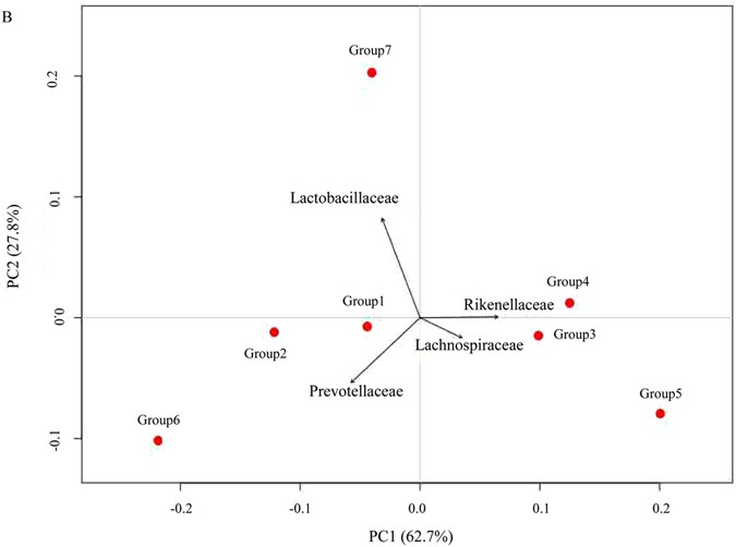 Effect Of Probiotics On The Meat Flavour And Gut Microbiota Of