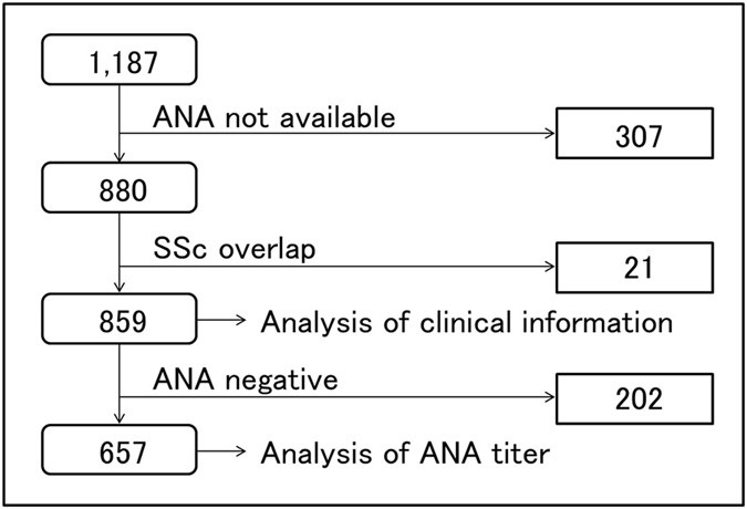 Anticentromere antibody exhibits specific distribution levels among New Ana Titer 1 640 Speckled Pattern