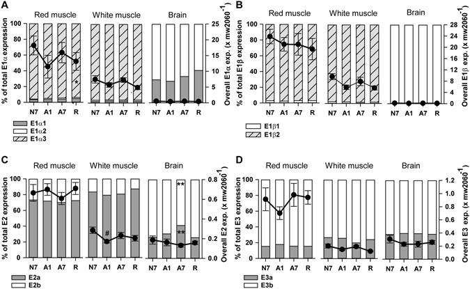 anoxia tolerance Role of trehalose phosphate synthase in anoxia tolerance and development in drosophila melanogaster and this was associated with increased tolerance to anoxia.