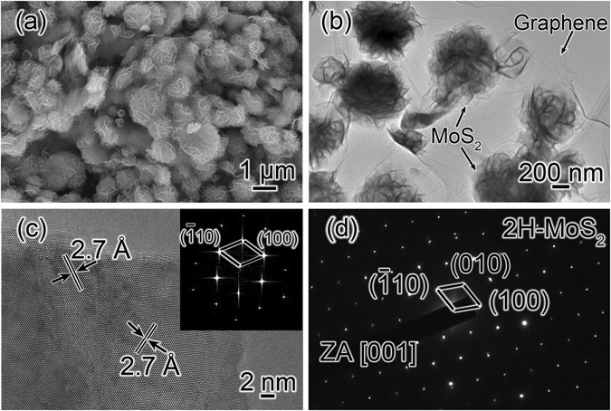 Lithium Ion Battery >> Direct Studies on the Lithium-Storage Mechanism of Molybdenum Disulfide | Scientific Reports