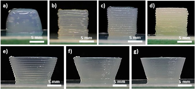 direct ink write  diw  3d printed cellulose nanocrystal