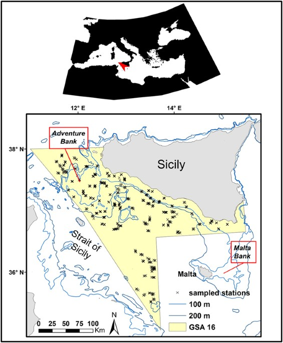 Species Distribution Models Of Two Critically Endangered