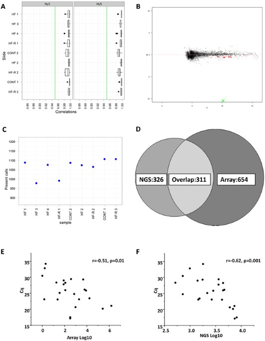 Identification Of Novel Micrornas In The Sheep Heart And Their