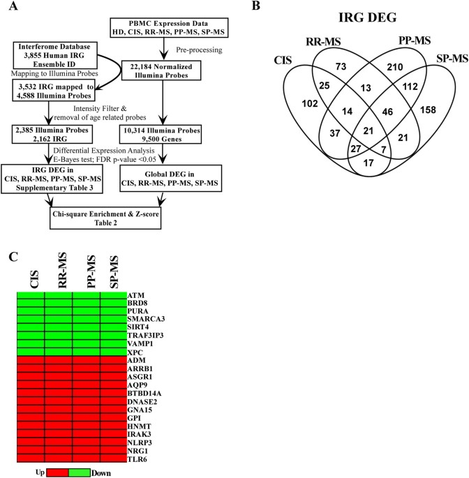 Transcriptional Dysregulation Of Interferome In Experimental And