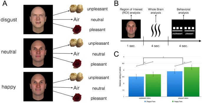 preprocessing of emotional visual information in the human piriform