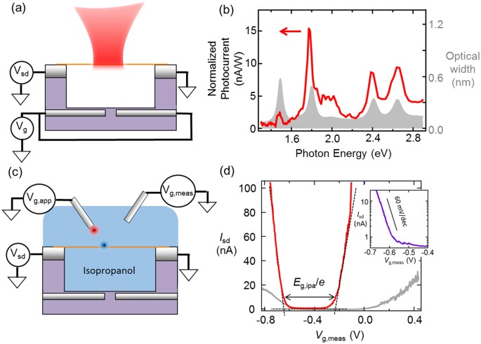 Giant modulation of the electronic band gap of carbon nanotubes by ...
