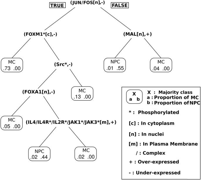 logic programming reveals alteration of key transcription factors in