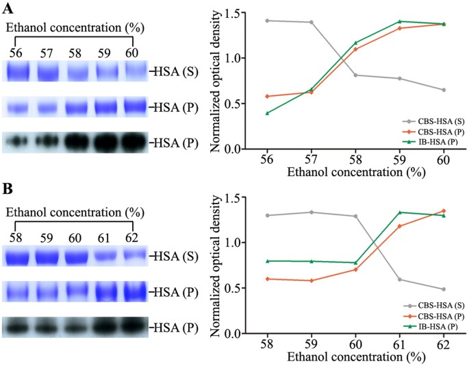 Proteomic and network analysis of human serum albuminome by figure 4 ccuart Image collections