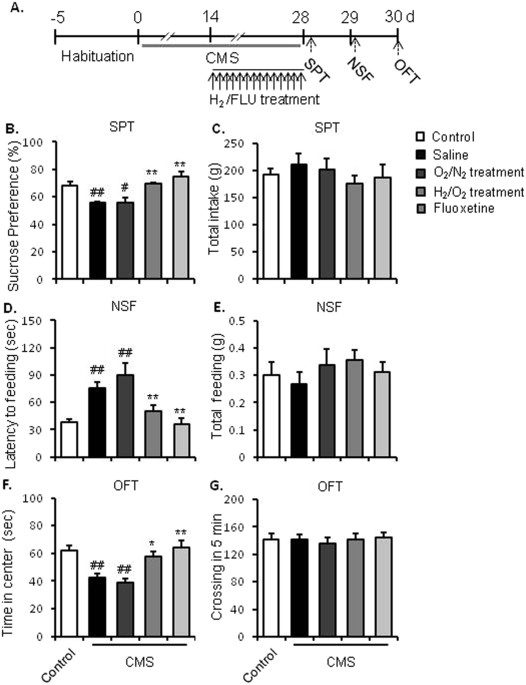 Marine Study Examines Stress Brain >> Molecular Hydrogen Increases Resilience To Stress In Mice