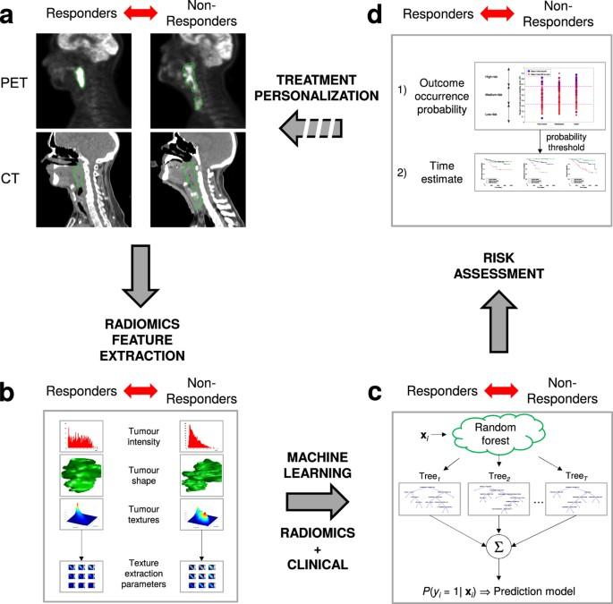 radiomics strategies for risk assessment of tumour failure