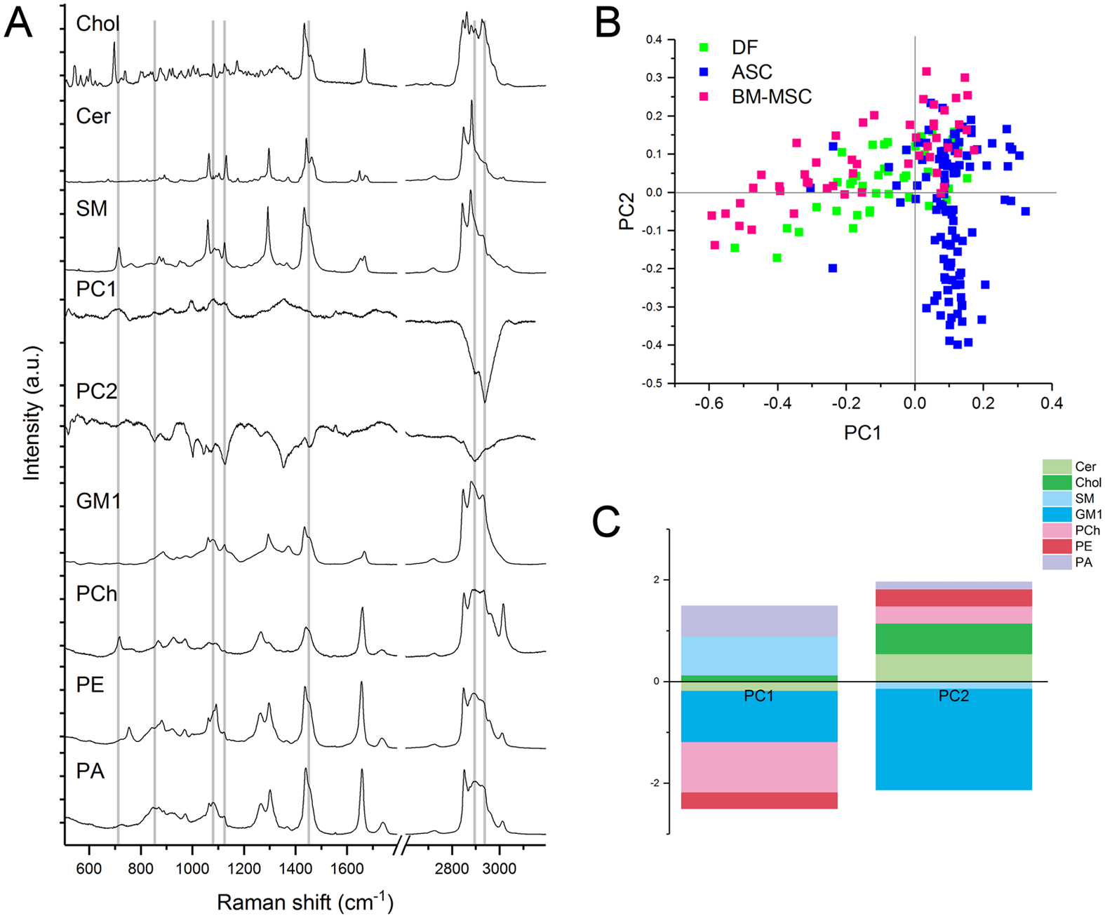 Raman Spectroscopy Uncovers Biochemical Tissue Related Features Of Electrical Panel Box Diagram For W219 A Spectra Reference Lipid Molecules Pc1 And Pc2 That Were Considered Cls Fitting The Grey Lines Highlight Correspondences Between