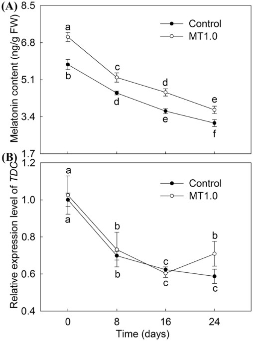 Ameliorative Effects Of Melatonin On Dark Induced Leaf Senescence In