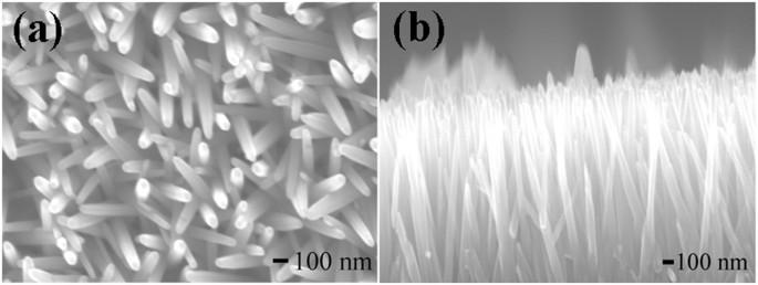 Honeycomb like zno mesoporous nanowall arrays modified with ag figure 1 fe sem malvernweather Gallery