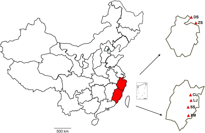 Map Showing The Location Of Bats Collected In This Study Labeled Red Zs Zhoushan Ds Daishan Cl Changle Lj Lianjiang Ss Shishi