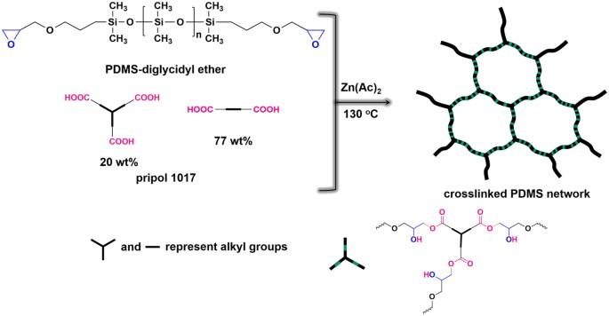 Recyclable Polydimethylsiloxane Network Crosslinked by