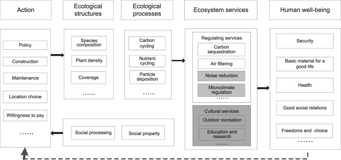 Assessing the ecosystem services provided by urban green